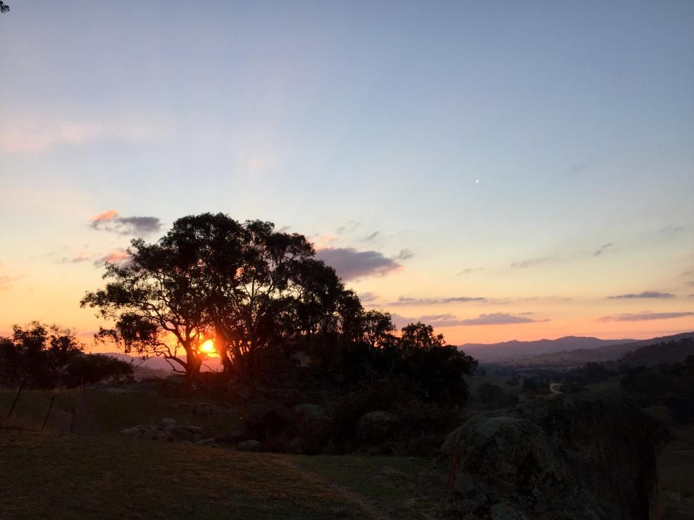emigreren en werken in Australië Winnie Sydney mooie zonsondergang