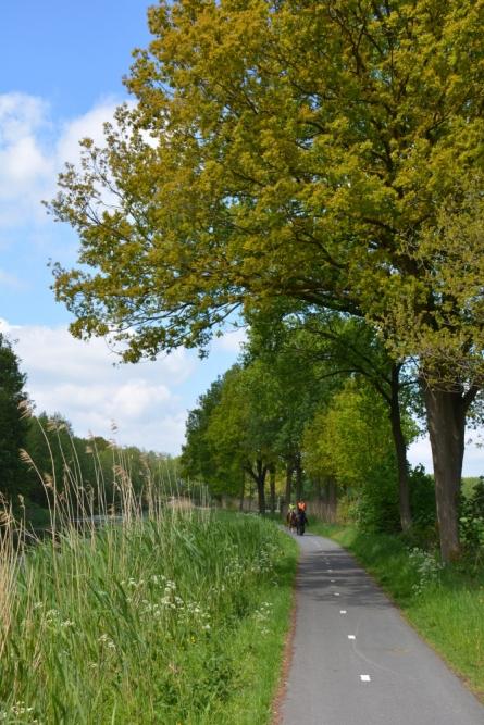 Fietsen Utrechtse heuvelrug fietspad langs de Grebbelinie