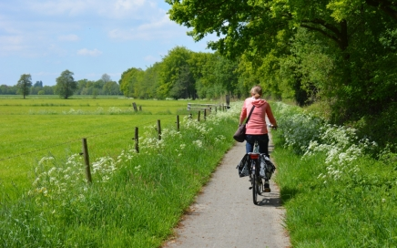 Fietsen Utrechtse heuvelrug langs de weilanden