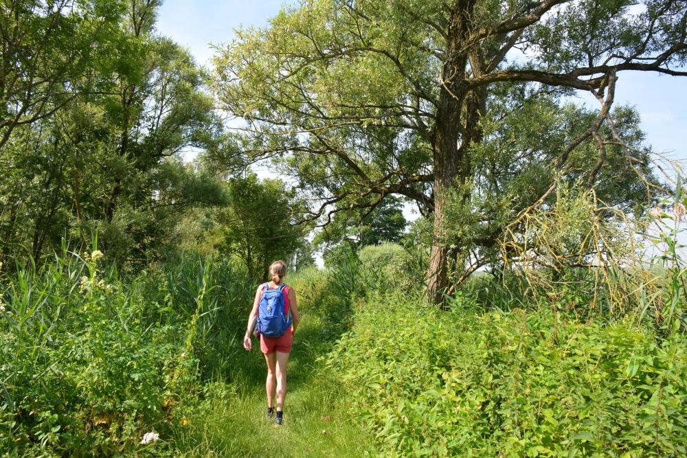 myfootprints wandeling Biesbosch