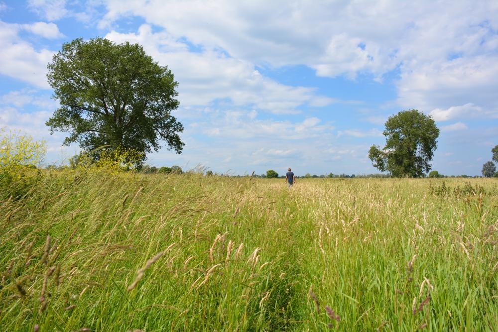 struinen langs de Maas bij Megen