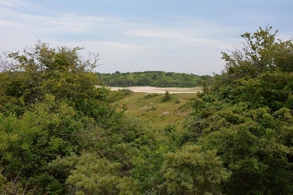 uitzicht op de duinen Oranjezon