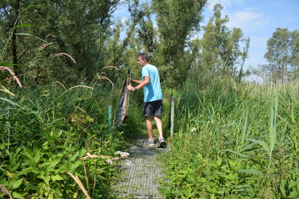 wandelen in de Biesbosch de Polder Jantjesplaat