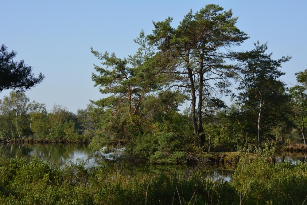 De Flaes landgoed de Utrecht hart van Brabant