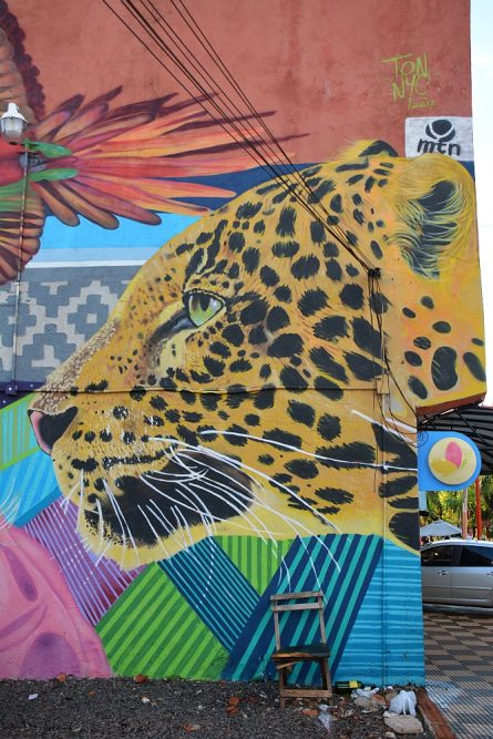 street art in Puerto Iguazú Argentinië jaguar
