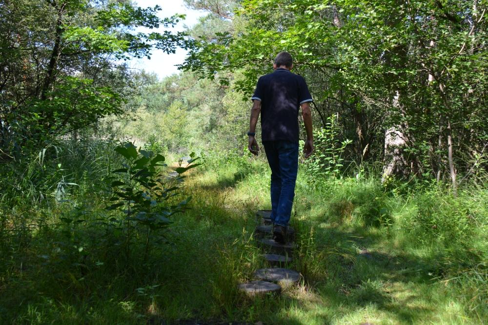 wandelen Brunssummerheide moerasgebied