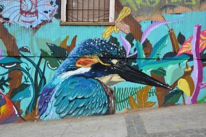 route door Chili Street art ijsvogel Valparaiso