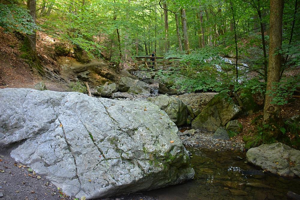 beukenbos en rotsen langs de Ninglinspo