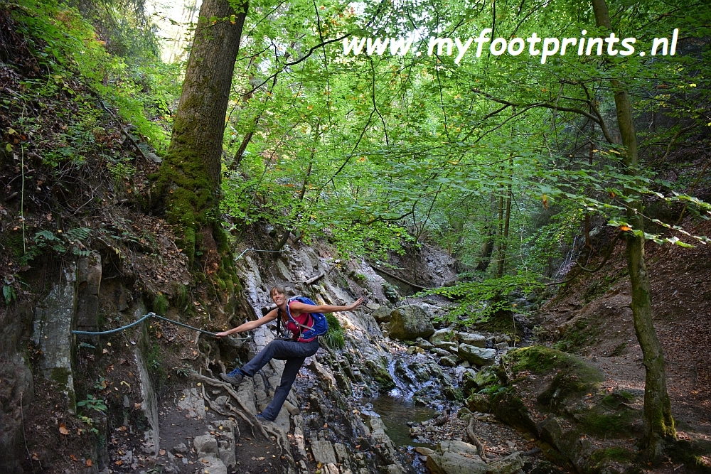 foto van de maand myfootprints.nl Ninglinspo Belgische Ardennen