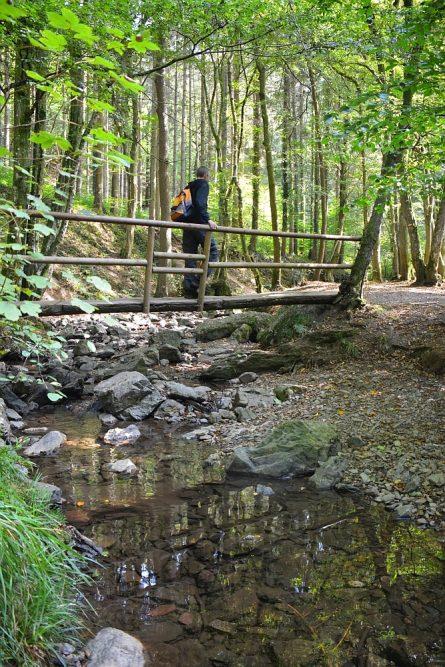 mooiste wandelingen in de Ardennen brug over de Ninglinspo