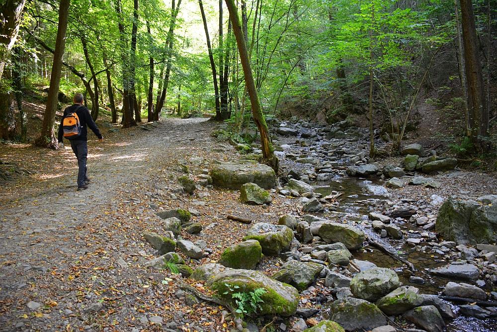mooiste wandelingen in de Ardennen de Ninglinspo
