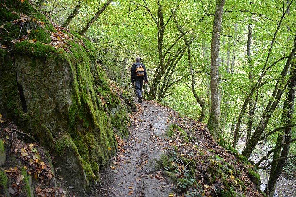 Geierlayschleife wandelen bij de Geierlay brug