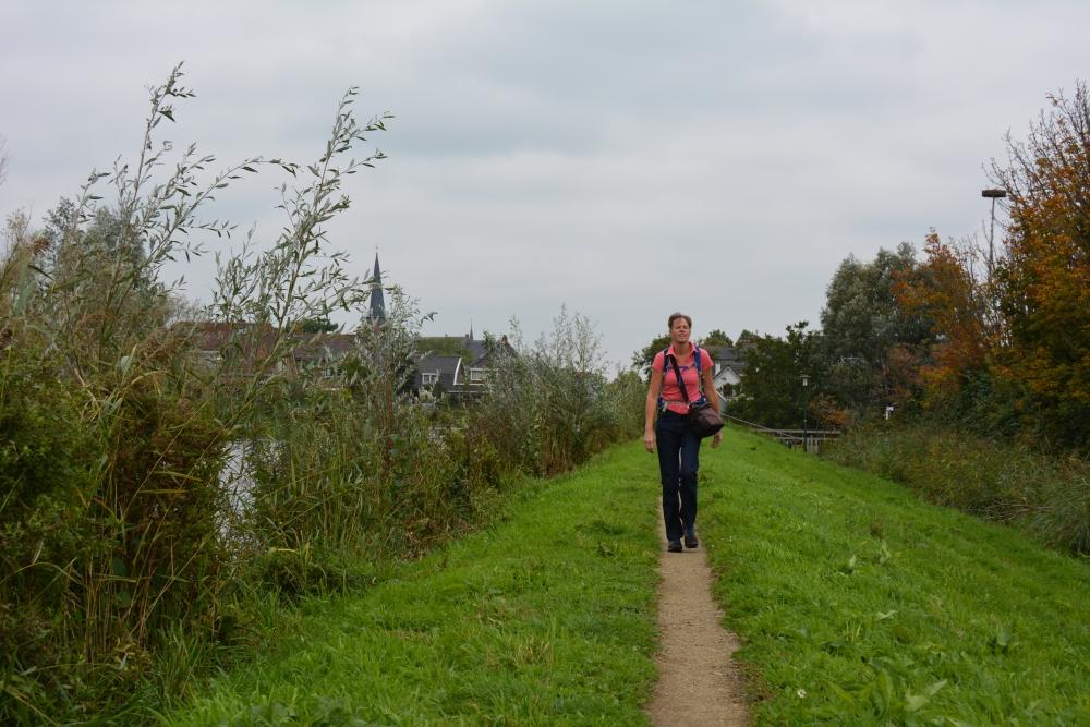 dijk bij Kockengen wandelen in Utrecht de Cockangeroute