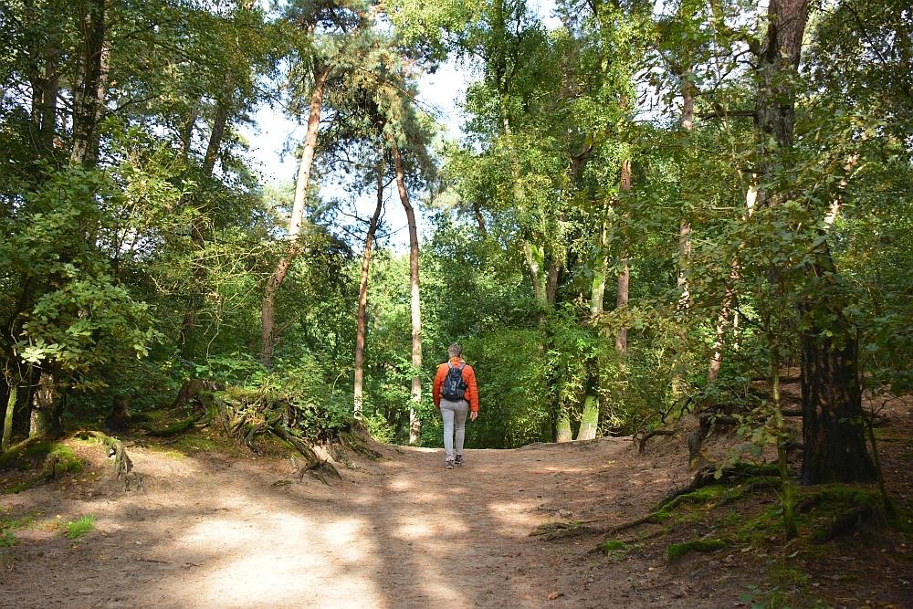 wandelen in de Lange Duinen Soest