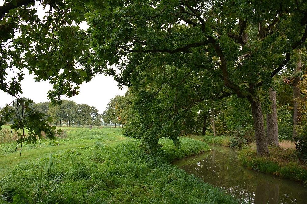 Halverwege het Parkbos ga je rechtsaf en wandel je achter het kasteel en de kasteeltuinen langs door een ander natuurgebied van Natuurmonumenten. Het pad voert dwars door de weilanden, langs de koeien en het water.