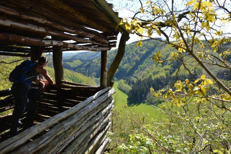 Mooiste wandelingen Eifel NaturWanderPark delux uitkijkpunt route 1