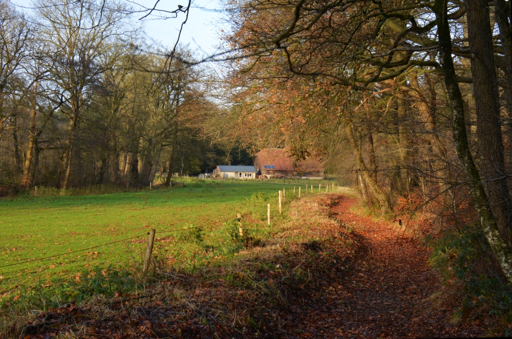 wandeling door Renkums Beekdal