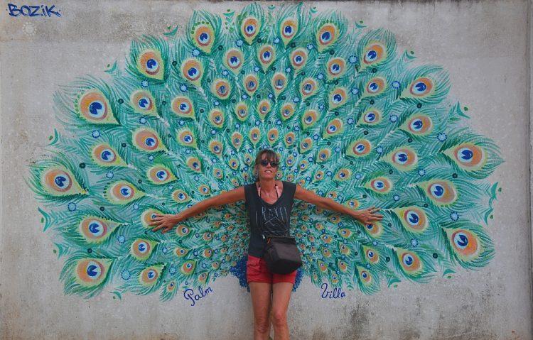 street art pauw bij Mirissa