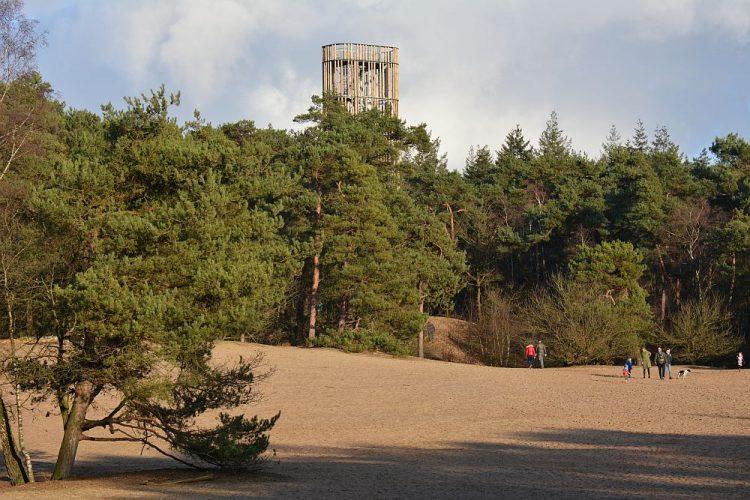 uitkijktoren Herpse bossen de Maashorst