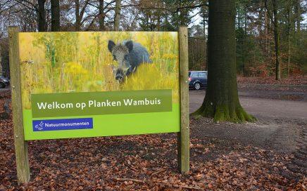 Planken Wambuis wandelroute bord wild zwijn
