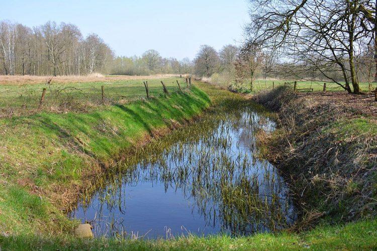 Westelbeersche Broek Brabantse kempen