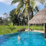 hotel Nelu Villa Sigiriya Sri Lanka