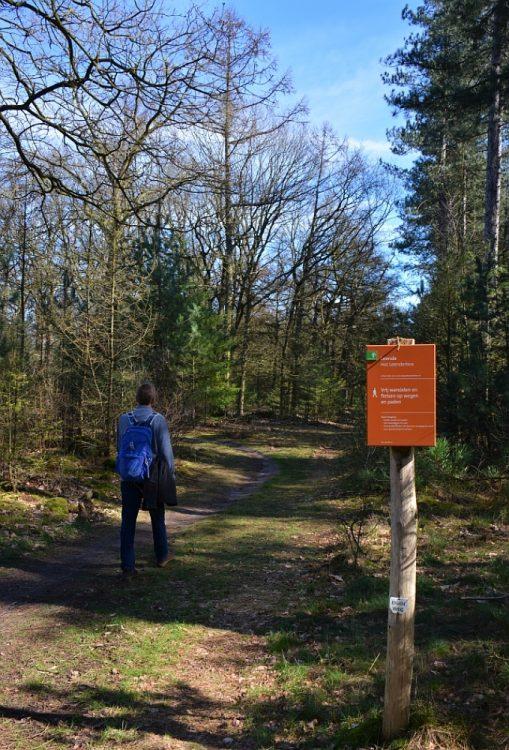 wandelen door het Leenderbos