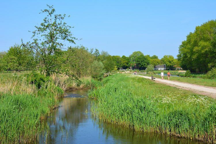 Markdal wandeling Breda