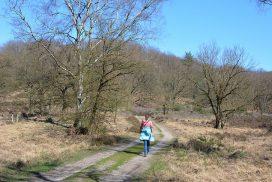 Myfootprints in de Meinweg Trage Tocht Herkenbosch