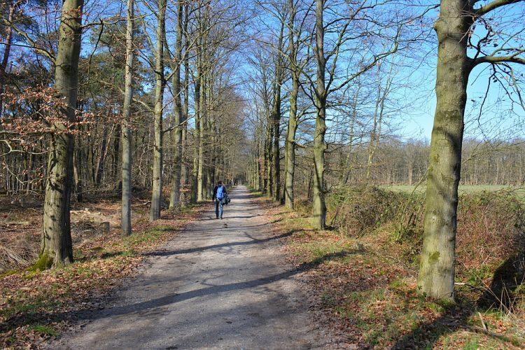 Rand bos en akkers Trage Tocht Waalwijk
