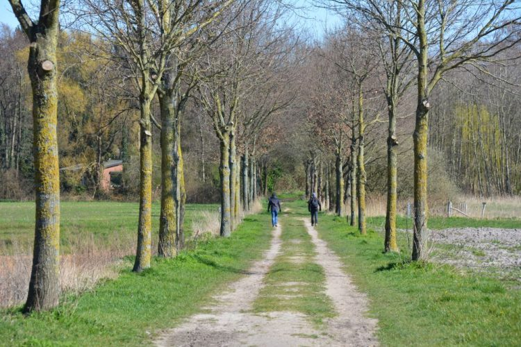 Trage Tocht Herkenbosch richting de Meinweg