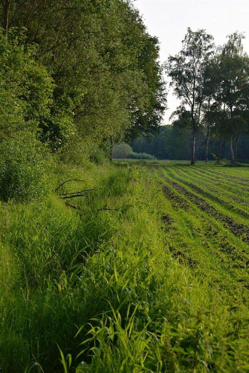 akkers en bosrand in het dal van de Dommel bij Waalre