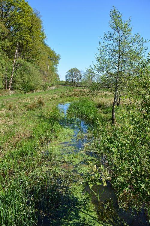 beekdal van de Geesserstroom Drenthe