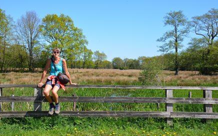 brugje over de Geesserstroom Drenthe