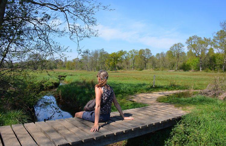 brugje over het Anloërdiepje Drenthe
