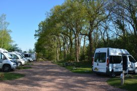 camperplaats Appelscha Friesland Drenthe Nederland