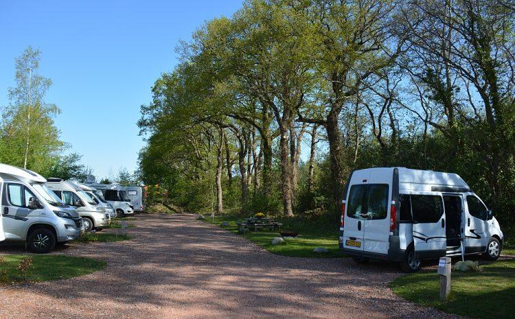 camping of camperplaats Nederland camperplaats Appelscha Friesland