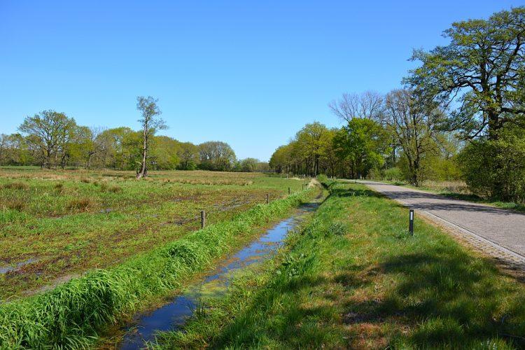 klinkerstraat en natuur in Drenthe