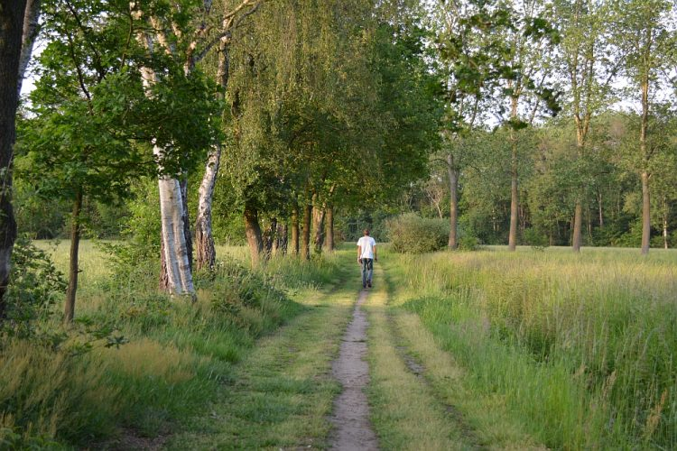 rand bos en akkers Waalre Brabant