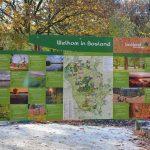 wandelen Bosland België het Hobos