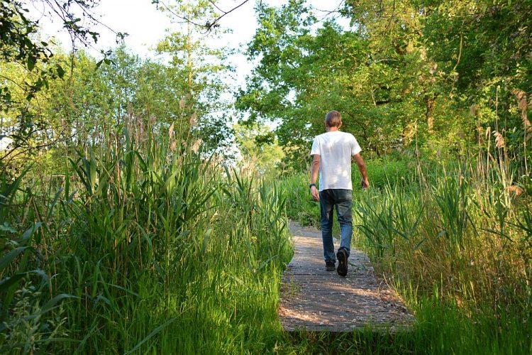 wandelen langs de Dommel het Loondermolenpad