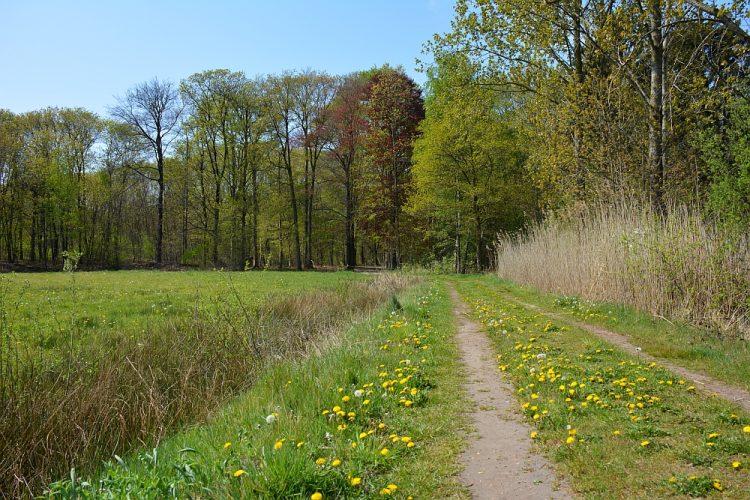 wandeling bij Oirschot dal Beerze en landgoed Baest