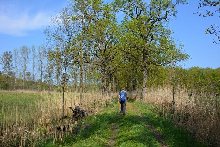 wandeling landgoed de Baest en Beerze