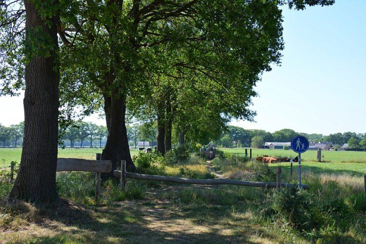 Trage Tocht Slangenburg wandelen Kolkstroeterpad bij Doetinchem