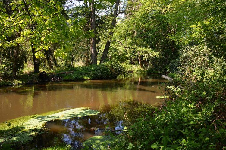 beekdal van de Swalm bij Swalmen Limburg