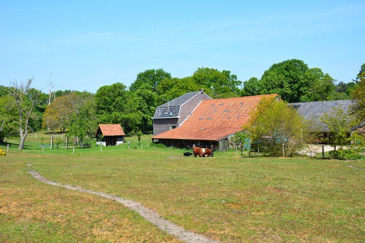 boerderij de Hout in dal Swalm bij Swalmen