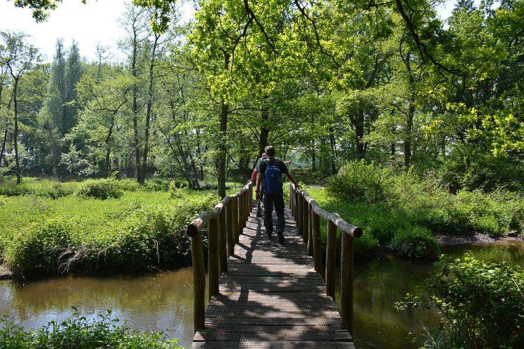 brug over Swalm tijdens wandeling Limburg