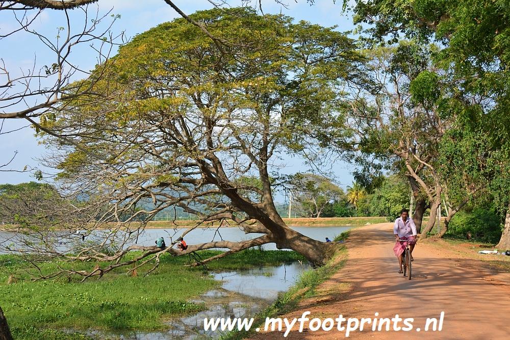 fietsen bij Tissamaharama Sri Lanka foto van de maand Myfootprints