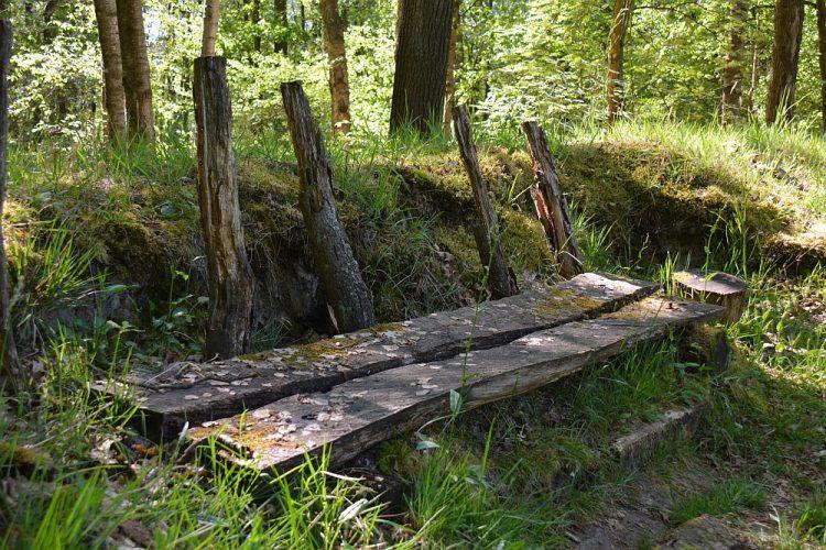 oud wandelbankje in het Weerterbos