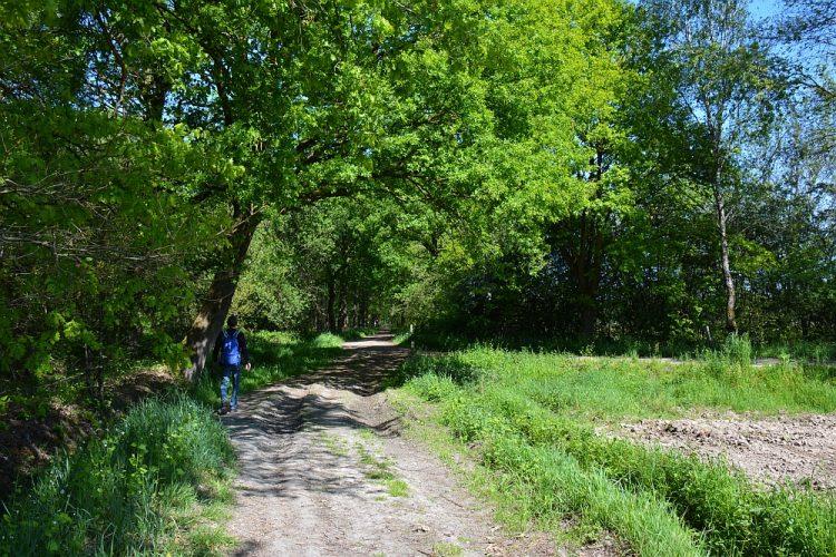 pad langs akkers bij het Weerterbos